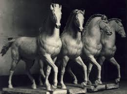 ARTICOLO 161: Equitazione e Disciplina Psicologica
